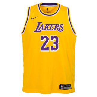 Los Angeles Lakers Nike NBA Icon Edition Swingman Jersey LeBron James Youth